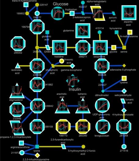 Node graph gauss markov network