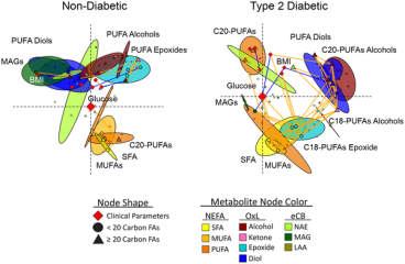 Spearman's correlations were used to generate multi-dimensionally scaled parameter connectivity networks for variable intercorrelations. Networks were oriented with fasting glucose at the origin and SFA in the lower right quadrant. Colored ellipses represent the 95% probability locations of metabolite classes (Hoettlings T2, p<0.05). Nodes indicate clinical parameters (diamonds), <20-carbon fatty acid metabolites (circles) and ≥20-carbon fatty acid metabolites (triangles), with discriminant model variables and glucose enlarged. Significant correlations between species are designated by orange (positive) or blue (negative) connecting lines (p<0.05, non-diabetic; p<0.01, diabetic participants).