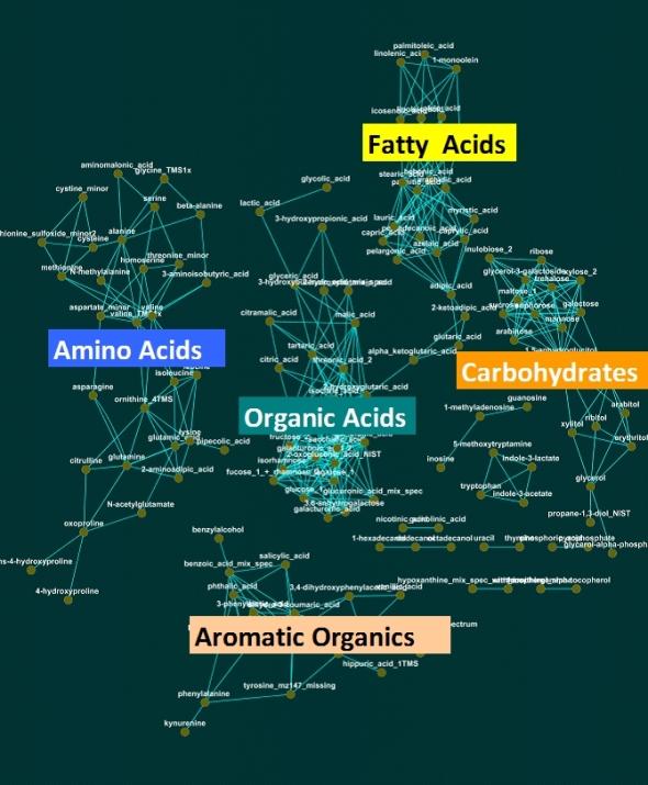 Chemical Similarity Network