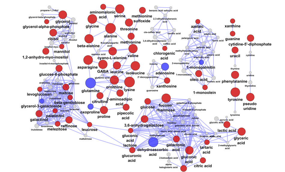 seed anaerobic stress - Chemical Similarity Network