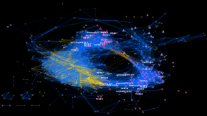 genotype network