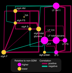 OPLS-DA network