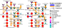Treatment response network